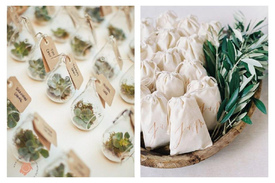 Düğünde Misafirlere Hediyeler Kaktüs